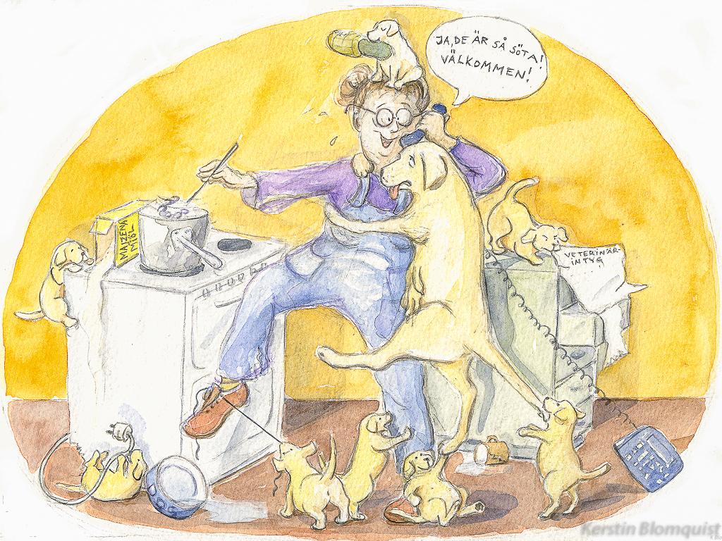 Kerstin Blomquist illustration